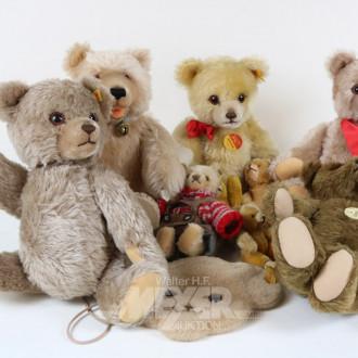 18 versch. Teddys, STEIFF