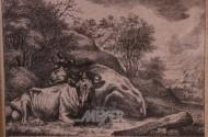 Stahlstich ''Kühe''