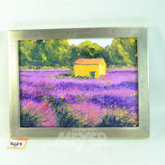Bild ''Lavender Feld''