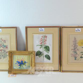 4 versch. Bilder ''Blumen''