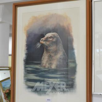 Bild, ''Seehund'', bez. Julius