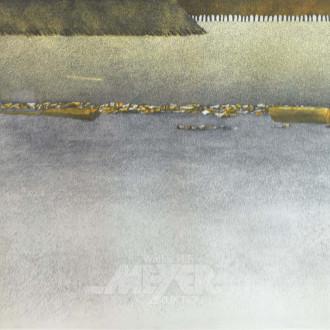 Lithographie ''Schwammgrenze''