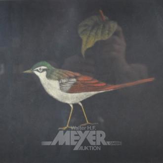 2 Lithografien ''Vögel''