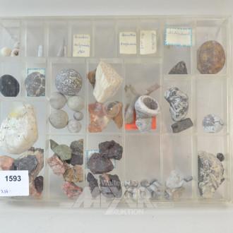Mineraliensammlung ''MONS KLINT''
