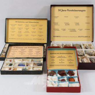 kl. Mineralien-Sammlung und Bernstein